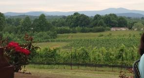 Виноградник Round Peak