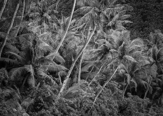 Dededo, Guam
