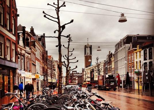 海爾德羅普, 荷蘭