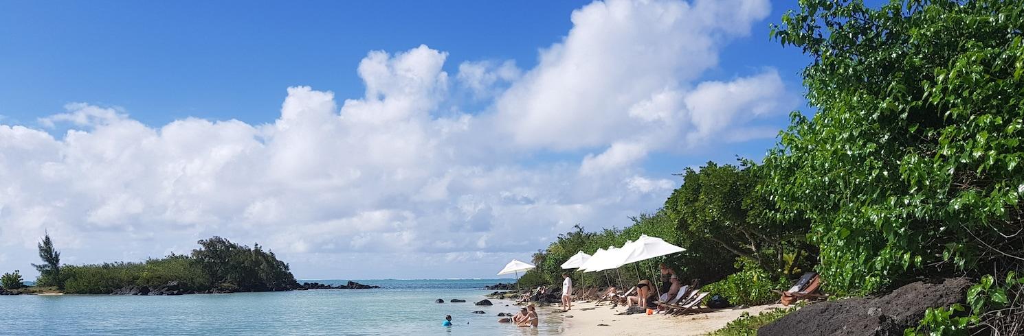 Kalodinas, Mauricijus