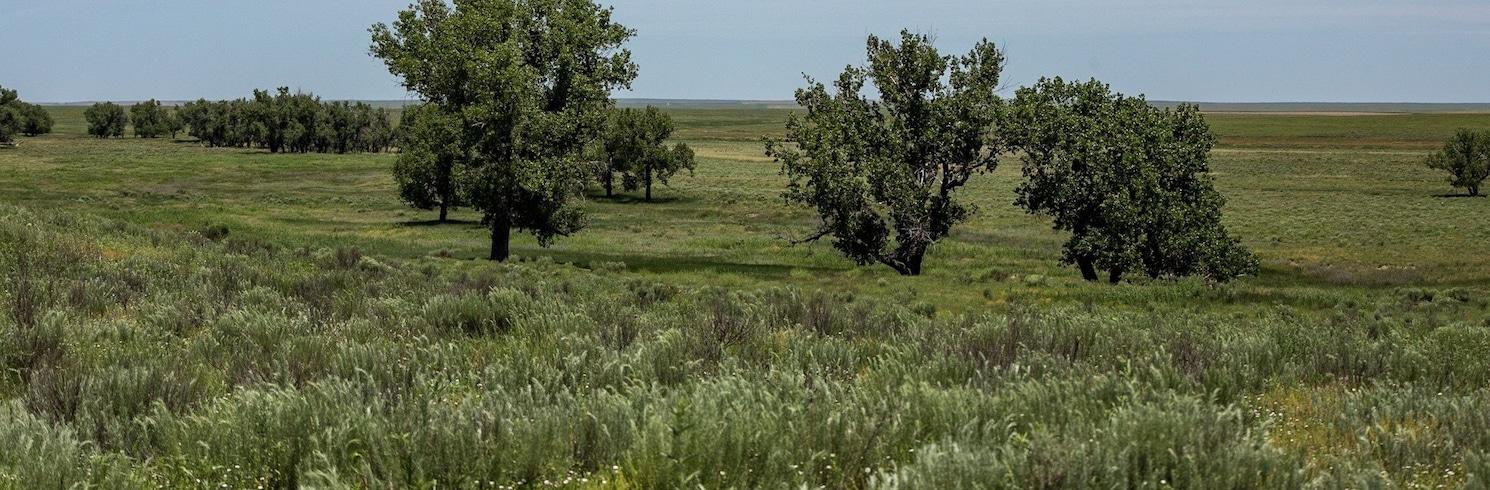 Kiowa County, Kolorado, Birleşik Devletler