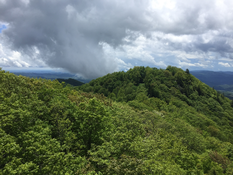 Caldwell County, North Carolina, United States of America