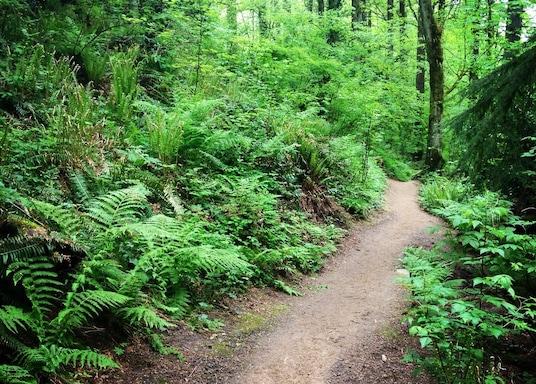 Southwest Hills, Oregon, United States of America
