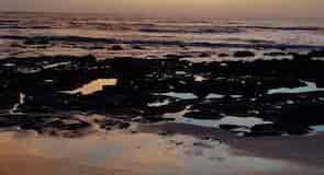 Playa Lagartillo