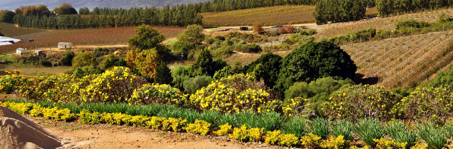 Cape Winelands, Güney Afrika