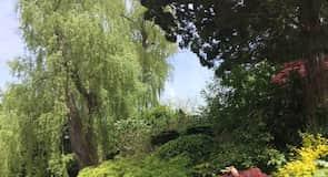 Toronto Botanik Bahçesi