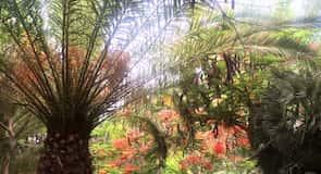 Zoológico Oasis Park Fuerteventura