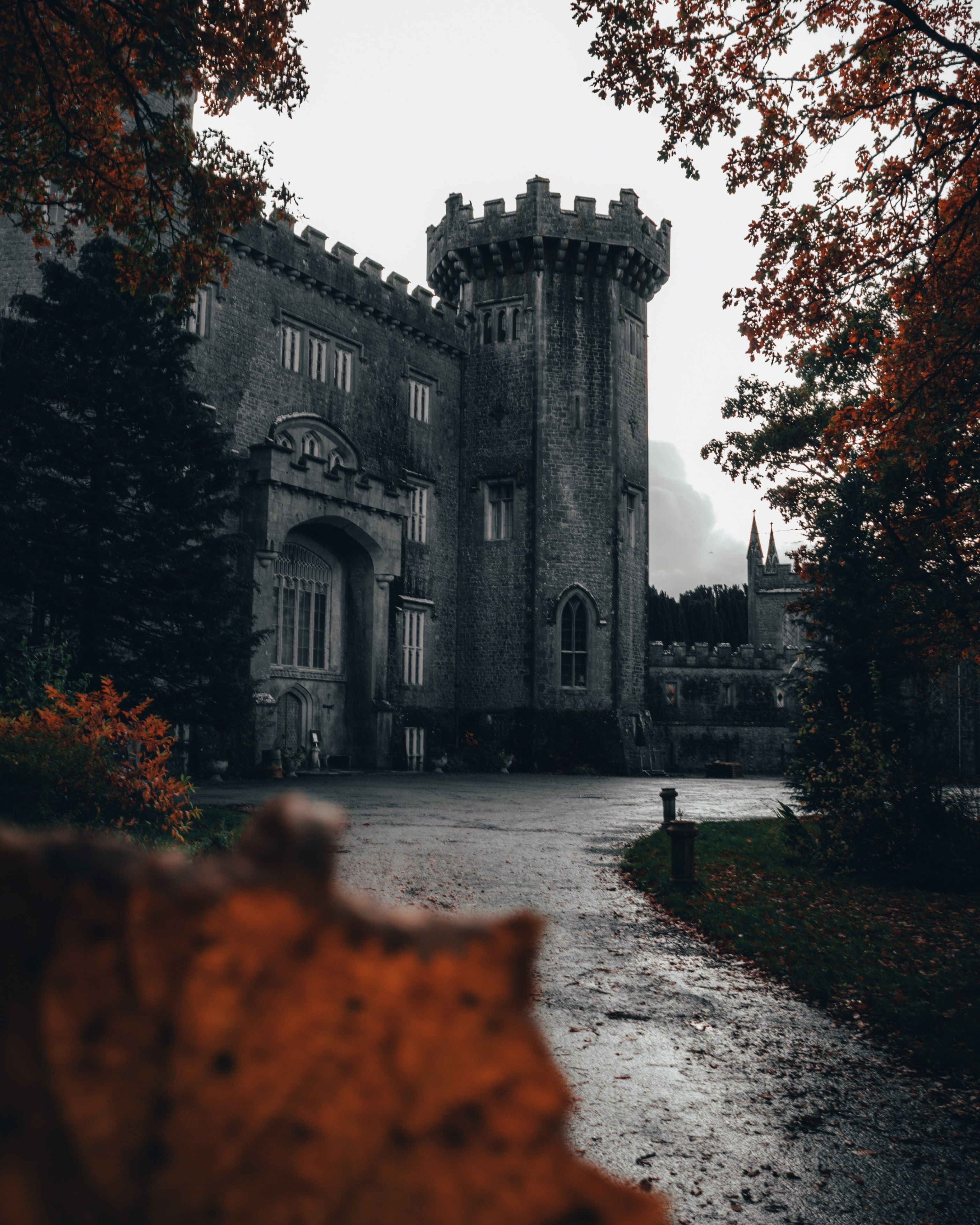 Offaly (kreivikunta), Irlanti