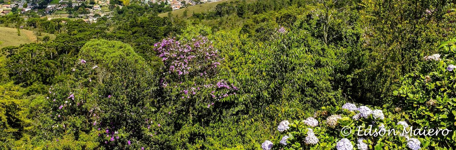 Campos do Jordao (และพื้นที่ใกล้เคียง), บราซิล