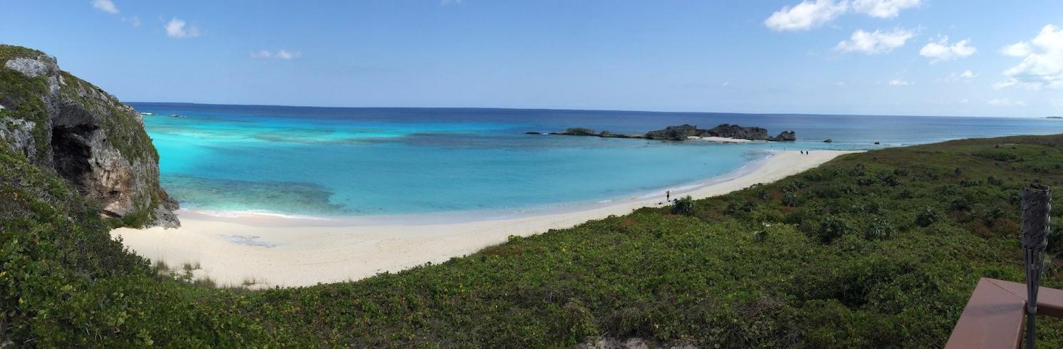 Conch Bar, Turks and Caicos