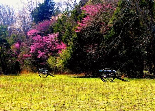 Murfreesboro, Tennessee, USA