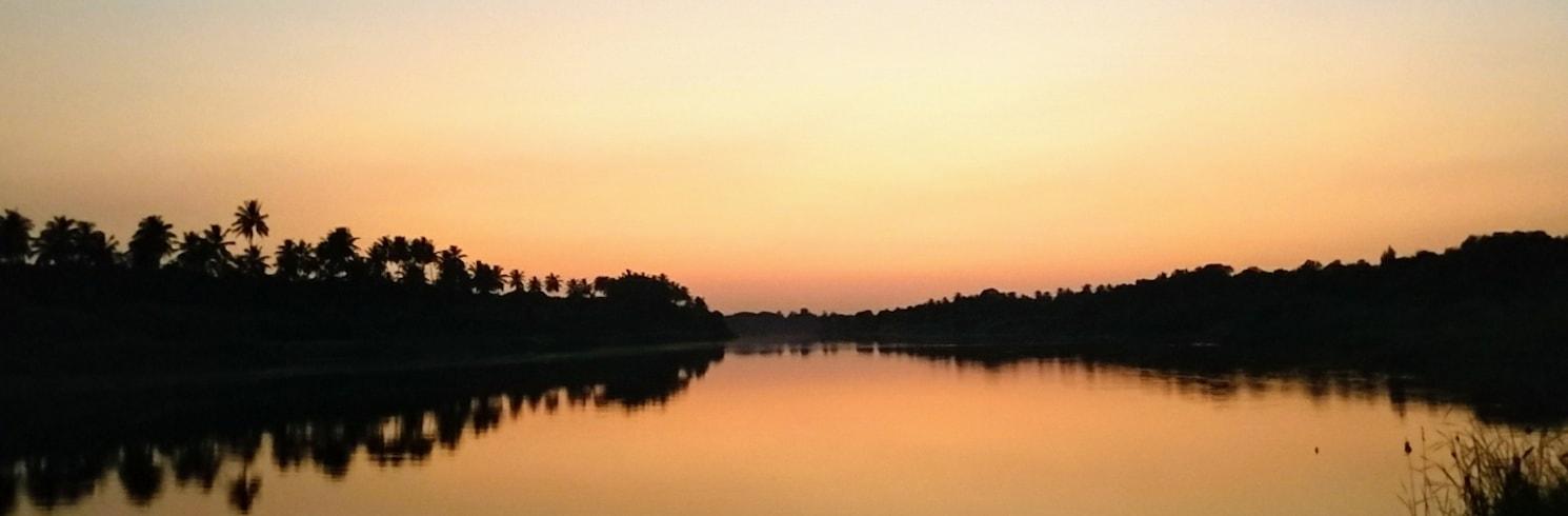 甘德維, 印度