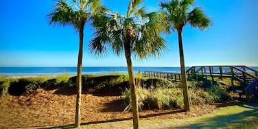 Oceanside, Hilton Head Island, South Carolina, United States of America