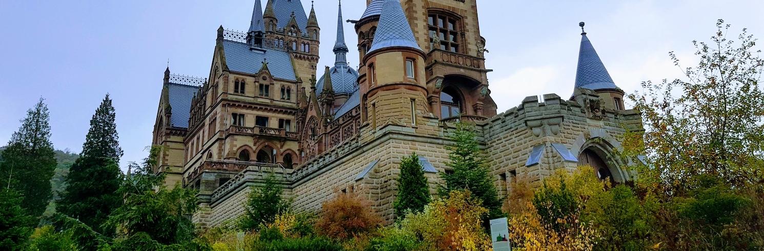 Kēnigsvintere, Vācija