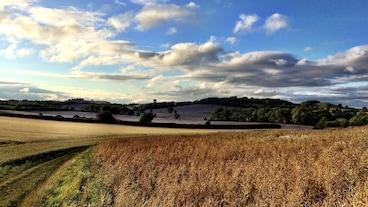 Banbury/