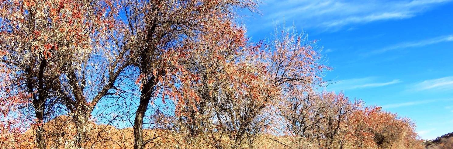 Gallup, New Mexico, Verenigde Staten