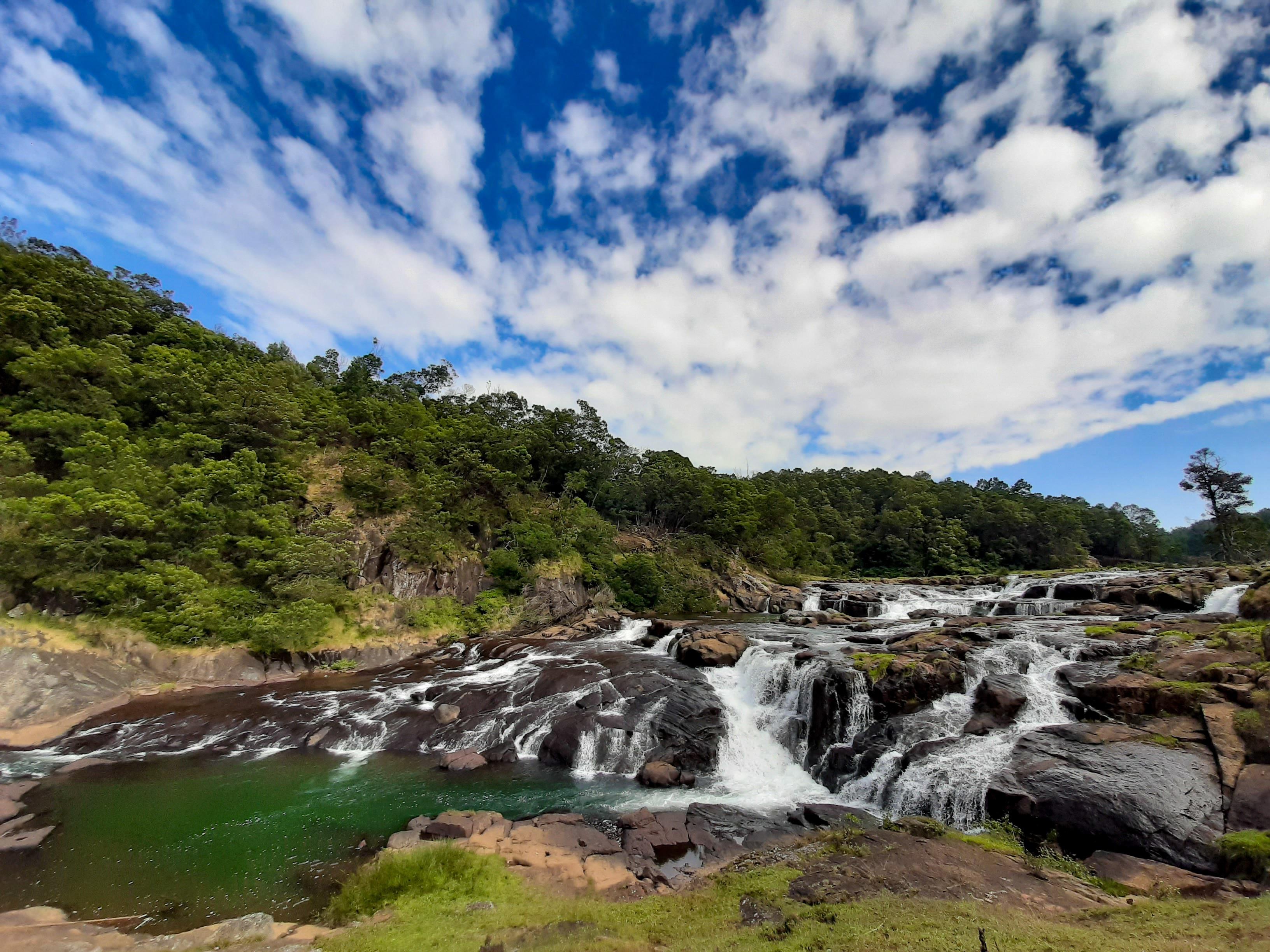 Mudumalai National Park, Gudalur, Tamil Nadu, India