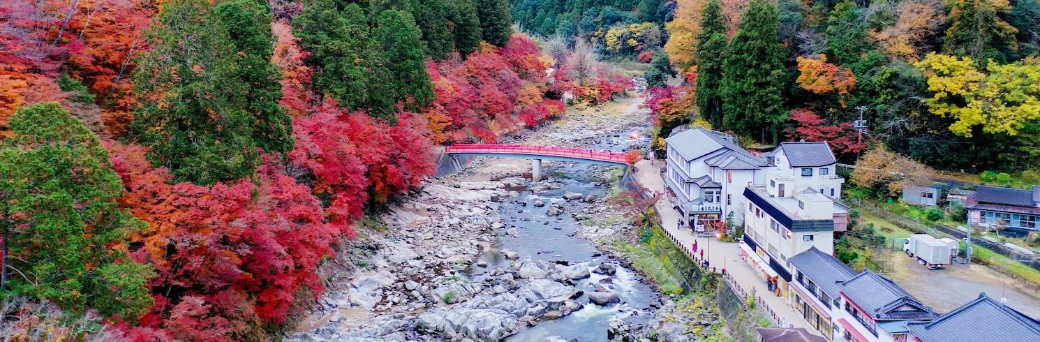 三河, 日本