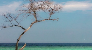Пляж Куда-Бандос