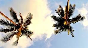 Ozran Beach
