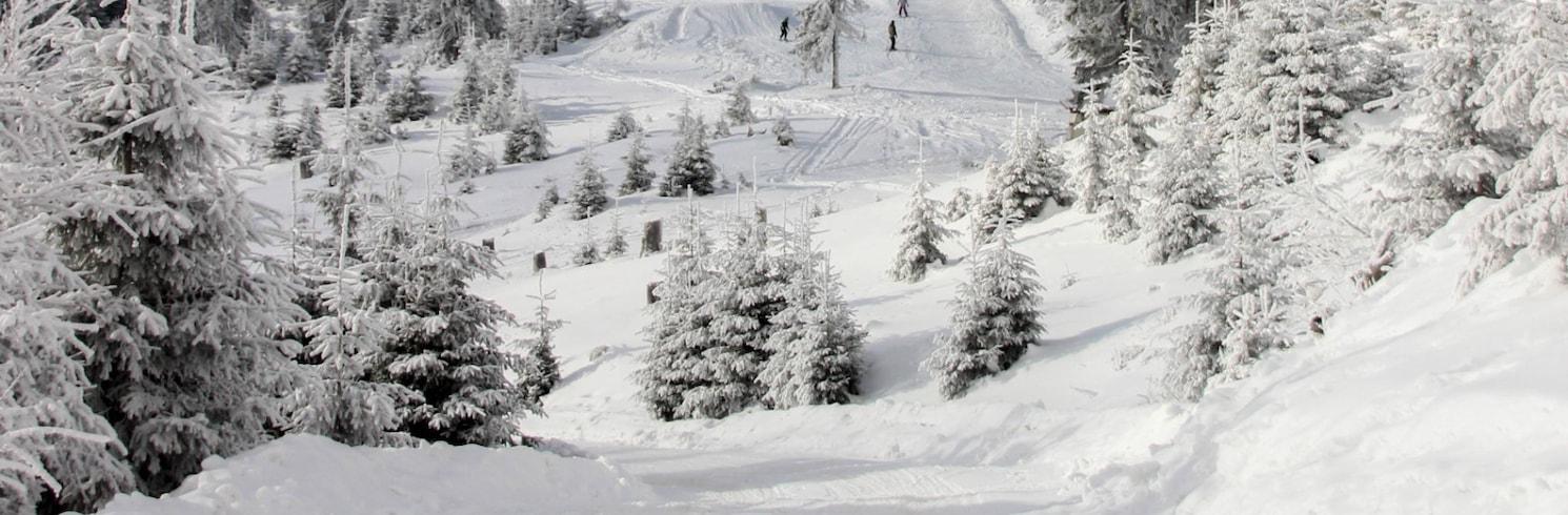 Zetea, Rumania
