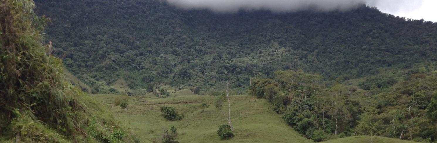 Кокорна, Колумбия
