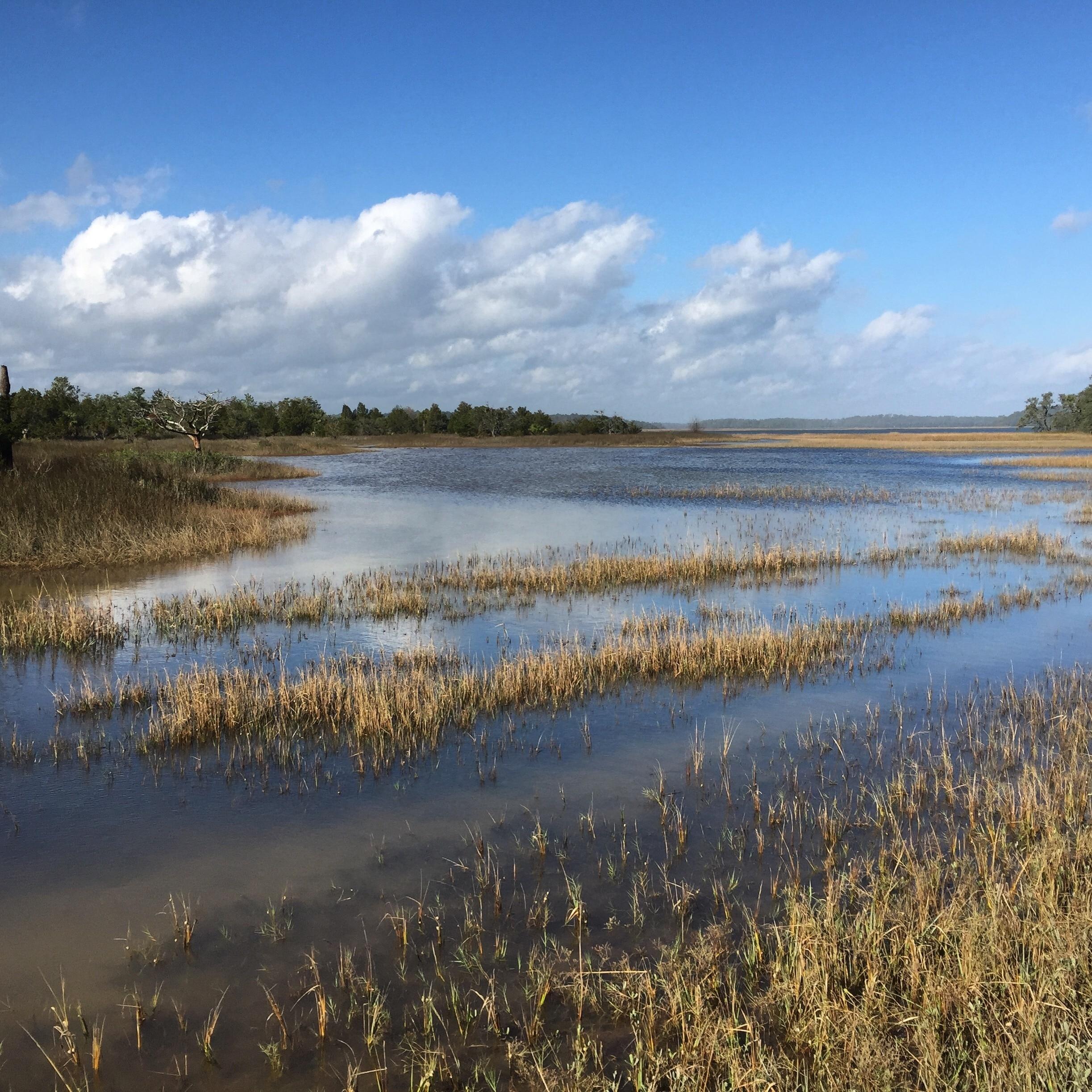 Nationaal natuurreservaat Pinckney Island, South Carolina, Verenigde Staten