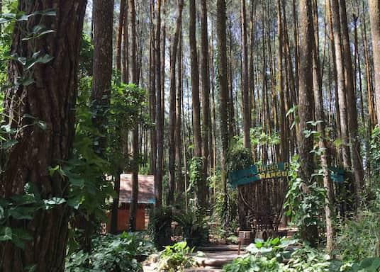 Mangunan, Indonesia