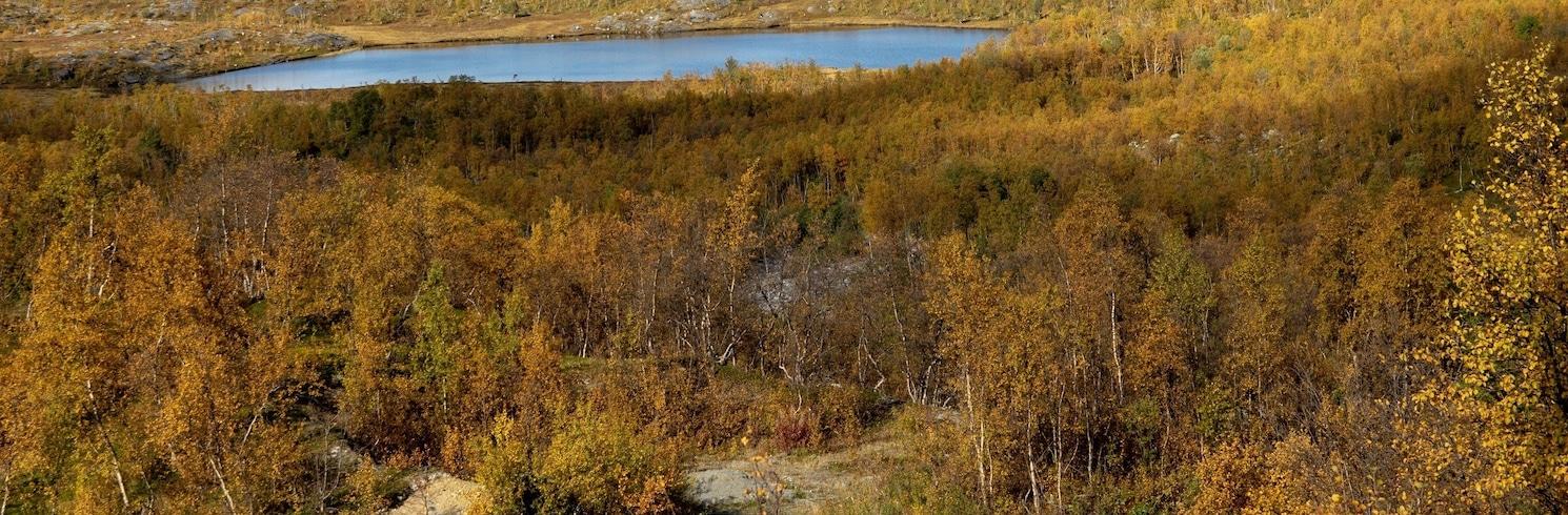 Storfjord, Na Uy