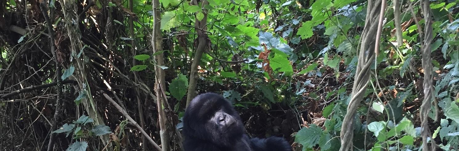 Shingiro, Rwanda