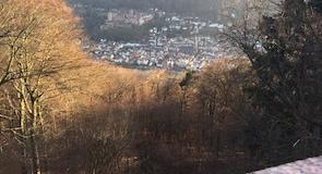 เขต Neuenheim