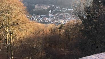 Neuenheim/