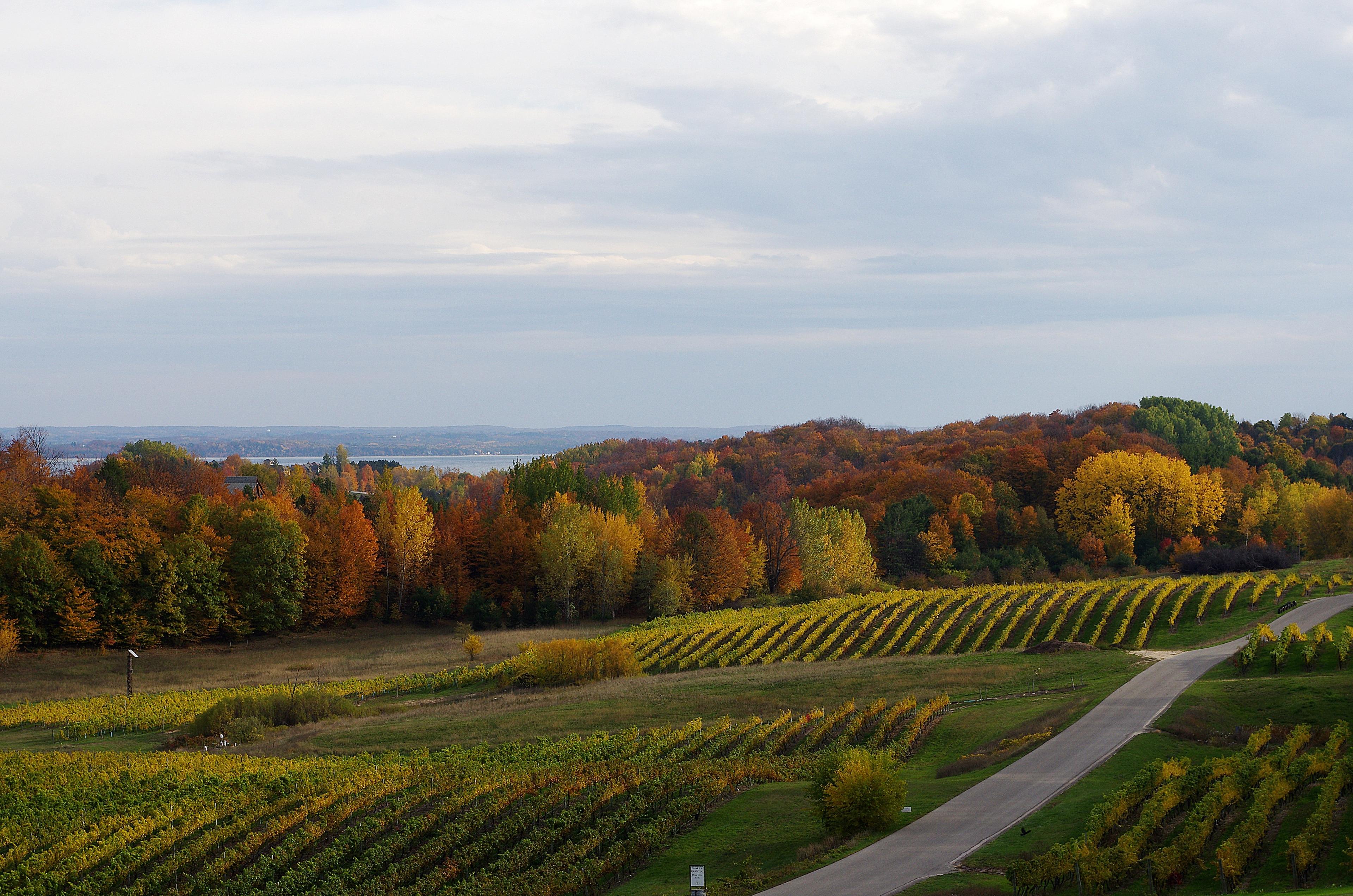 Leelanau Township, Michigan, United States of America