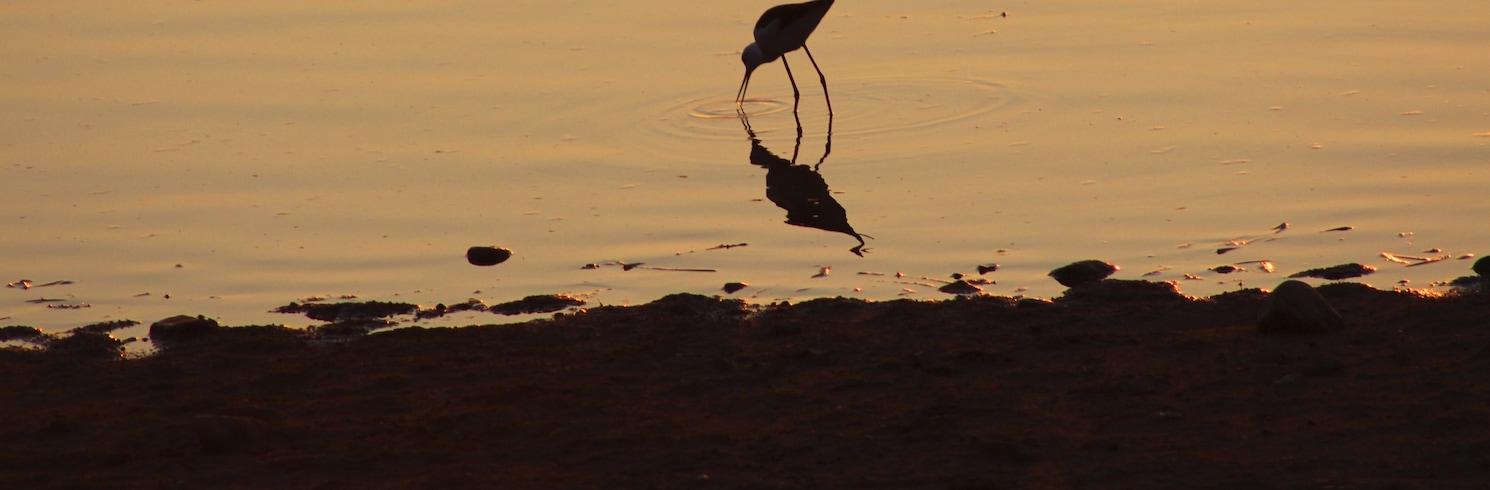 Groot Karoo, Dél-Afrika