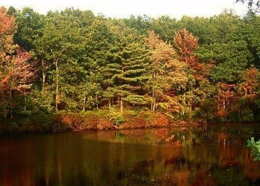 Concord, Massachusetts, Estados Unidos