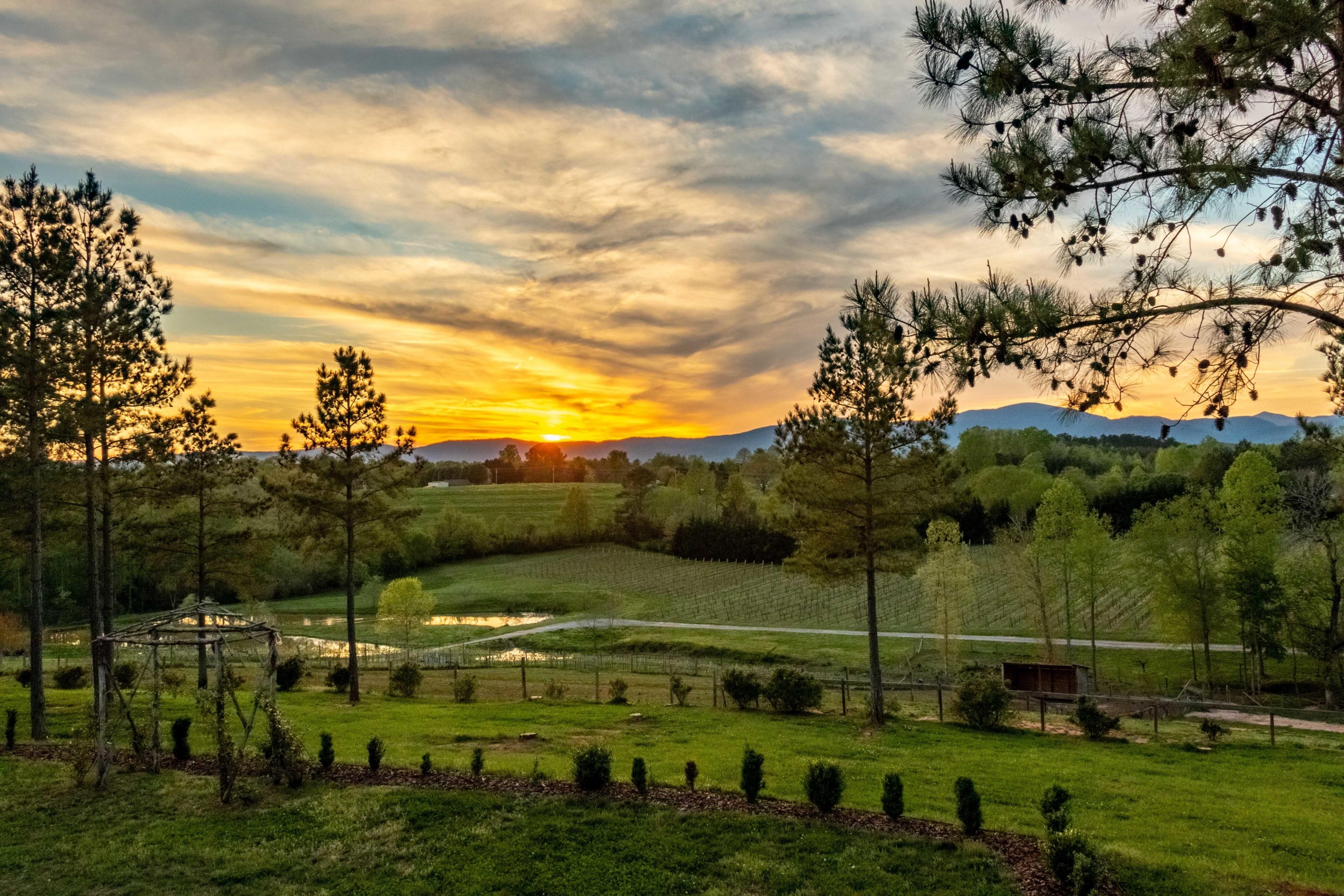 Mill Spring, North Carolina, United States of America