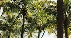 Παραλία Palawan