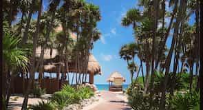 Paradise tengerpart