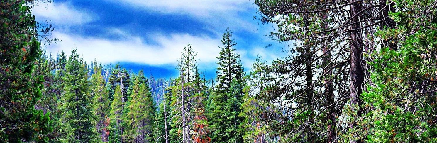 Visalia, California, United States of America