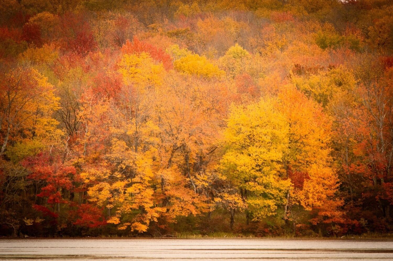 Gouldsboro State Park, Tobyhanna, Pennsylvania, United States of America