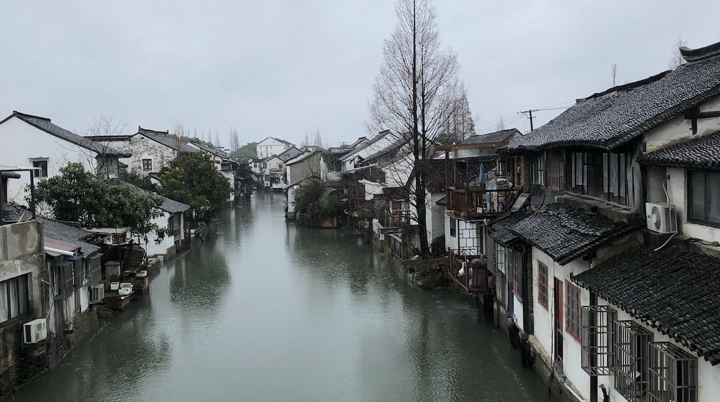 相片由 Toshiaki Yoshitake 提供