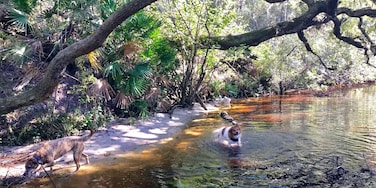 Middleburg, Florida, Verenigde Staten
