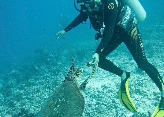 Tiputa, Polinesia Francesa