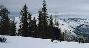 Bear Valley Ski