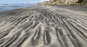 Black's Beach (Strand)