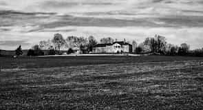 Belle Grove Plantation (birtok és emlékház)