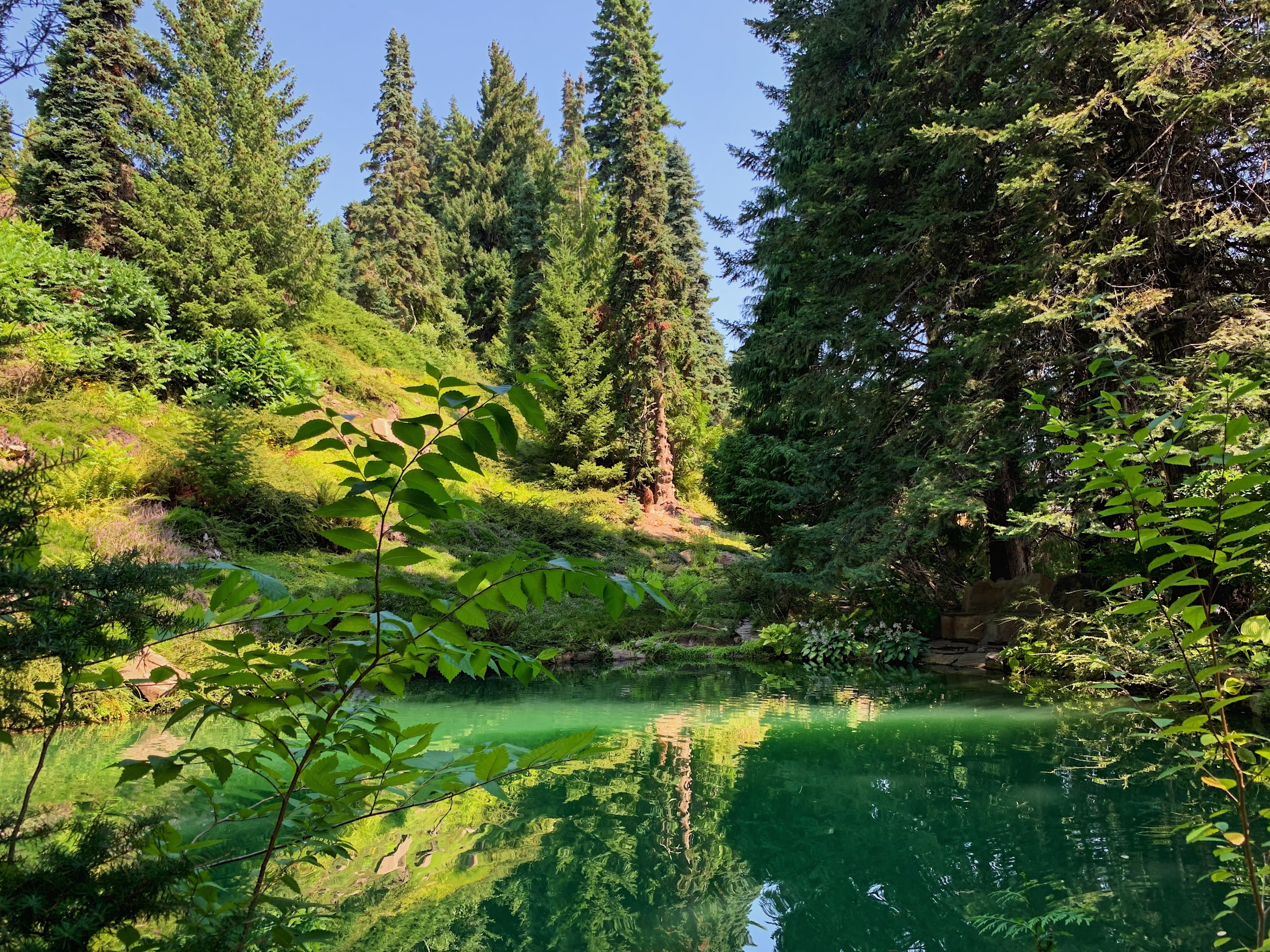 Ohme Gardens, Sunnyslope, Washington, USA