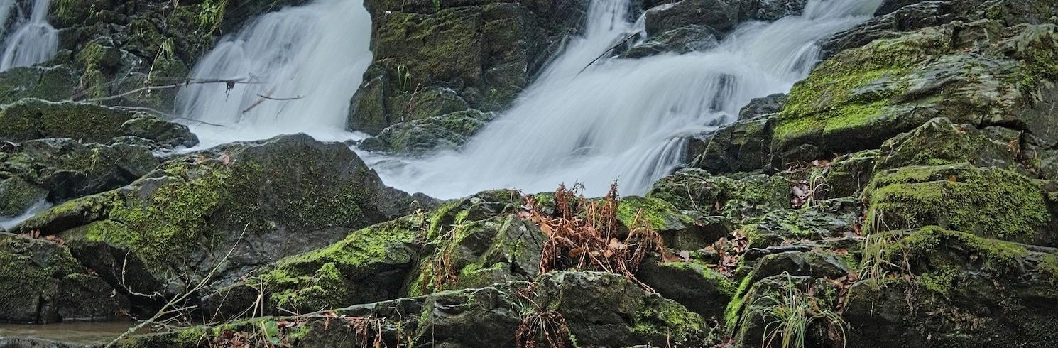 Harzgerode, Alemania