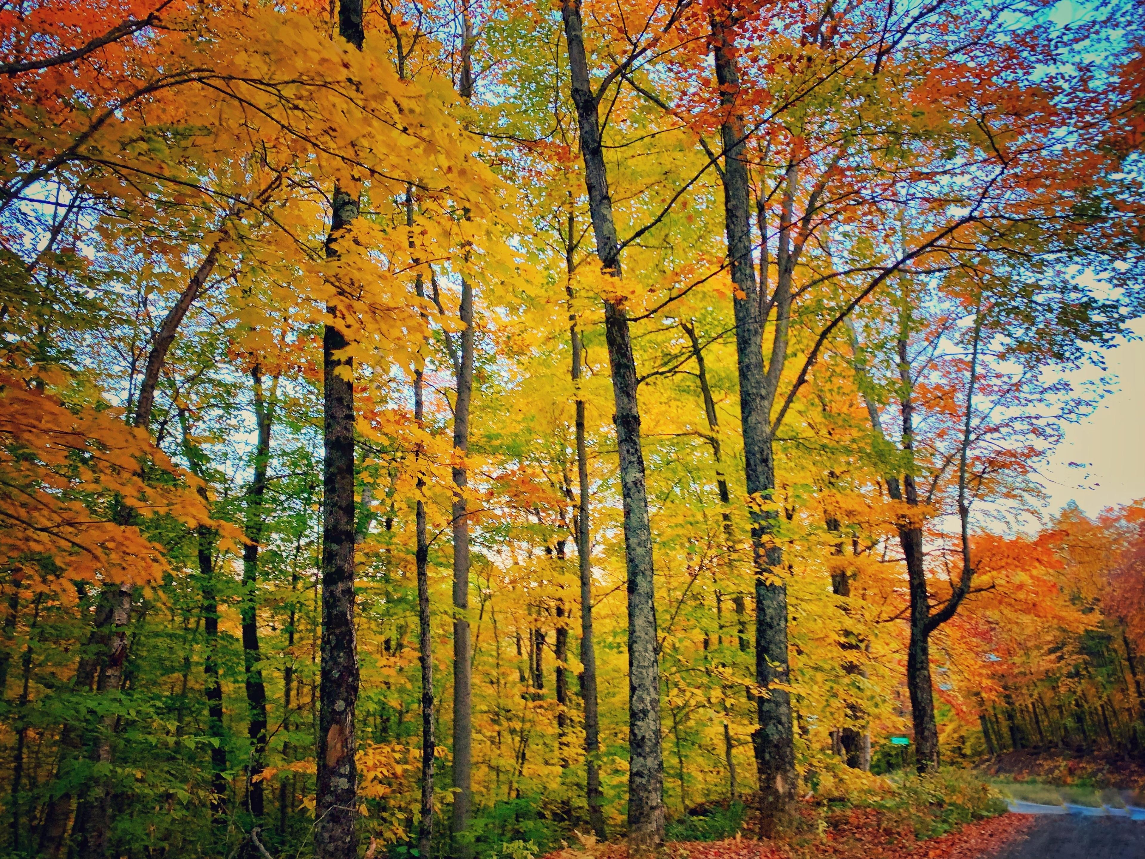 Underhill, Vermont, United States of America
