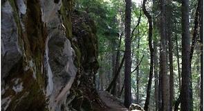 Oregon Caves Nemzeti Park